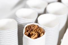 在组装的白色香烟 免版税库存照片