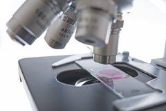 在细节的实验室显微镜 免版税库存照片