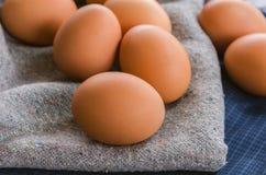 在织品的特写镜头未加工的鸡鸡蛋 免版税库存图片