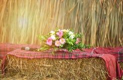 在织品苏格兰人的花瓶 图库摄影