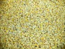 在结冰的玉米五谷 免版税库存照片