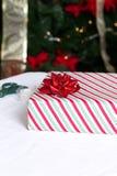 在结构树前面的被包裹的礼品 免版税库存照片