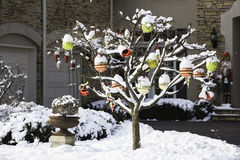 在结构树的圣诞节球 库存图片