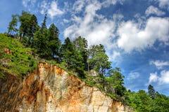 在结构树的峭壁大理石 库存图片
