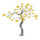 在结构树的美丽的黄色花 库存照片