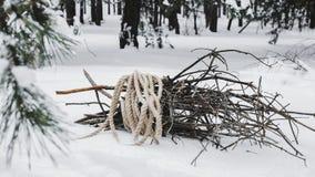 在绳索包裹的收集的草丛在雪说谎在冬天森林里 图库摄影