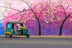 在维杰亚瓦达,印度街道上的人力车小室  免版税图库摄影