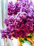 在绽放的桃红色和淡紫色丁香关闭 库存照片