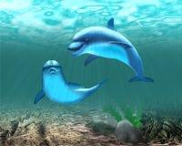 在绿松石海水的两只浮动海豚 库存例证
