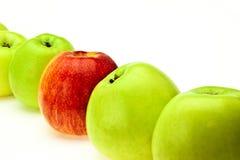 在绿色之中的红色苹果 库存照片