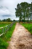在绿色农田的泥泞的路有篱芭的 免版税库存图片