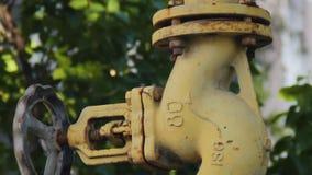 在绿色叶子背景的被放弃的黄色煤气管  股票录像