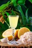 在绿色叶子自然背景和柠檬的Limoncello 库存照片