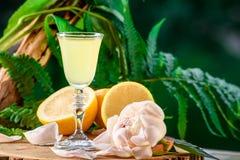在绿色叶子自然背景和柠檬的Limoncello 图库摄影