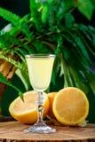 在绿色叶子自然背景和柠檬的Limoncello 免版税库存图片
