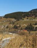 在绿色和黄色小山的木小屋 免版税图库摄影