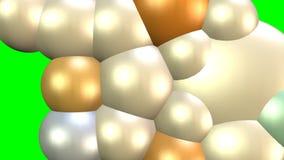 在绿色屏幕,增长的分子上的许多增量动画代表3d球 酵母的再生产或有机 库存例证