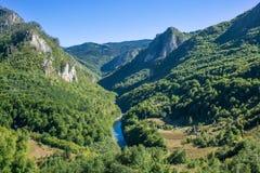 在绿色山和塔拉河峡谷的美丽的景色 免版税图库摄影