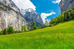 在绿色山坡的瑞士山中的牧人小屋 瑞士的阿尔卑斯 卢达本纳, Swit 库存照片