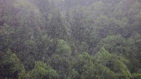 在绿色山小山的雪雨 影视素材