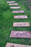 在绿色庭院的石台阶方式 库存图片