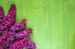 在绿色木背景,拷贝空间的淡紫色花,对角 免版税库存照片