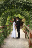 在绿色本质新娘和新郎亲吻 免版税图库摄影