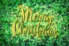 在绿色杉树分支的圣诞快乐 免版税图库摄影