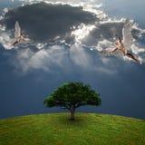 在绿色树上的天使 免版税库存照片