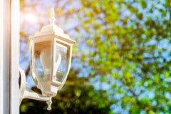 在绿色树背景,太阳的光芒阐明的织地不很细背景的街灯 免版税库存照片