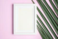 在绿色棕榈叶的顶视图空白白色照片框架在淡色pi 免版税图库摄影