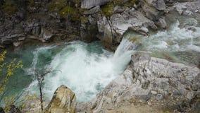 在绿色森林惊人的山河瀑布、岩石和净水的落下的瀑布 股票录像