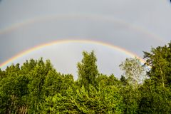 在绿色森林的双重彩虹 库存图片