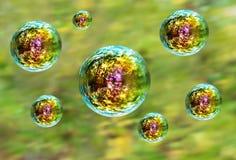 在绿色森林背景的呈虹彩肥皂泡 免版税图库摄影