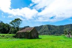 在绿色森林,圣地米格尔,亚速尔,葡萄牙中间的被放弃的农厂房屋建设 免版税图库摄影