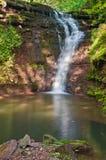 在绿色森林Cascad中间的平静的瀑布风景 图库摄影