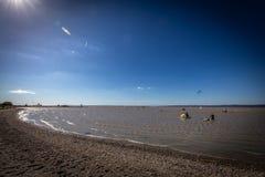在绿色海滩的大风天湖Neusiedler在有风帆冲浪者的Podersdorf 库存图片