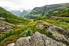 在绿色牧场地的道路西挪威山的有雪的在山顶和黑暗的多云天空 库存图片