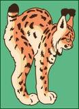 在绿色背景的天猫座动物 免版税库存图片