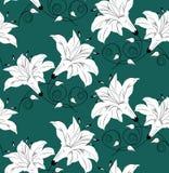 在绿色背景的无缝的传染媒介花卉墙纸设计 库存照片
