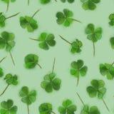 在绿色背景隔绝的三叶草无缝的样式 圣帕特里克` s背景、印刷品和纺织品的天设计 图库摄影