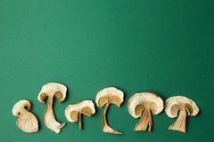 在绿色背景隔绝的干蘑菇 r 库存照片
