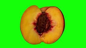 在绿色背景03A使成环的转动的被切的桃子 向量例证