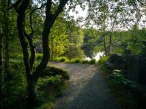 在绿色自然的脚道路在湖旁边 库存图片