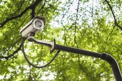 在绿色自然bokeh backgro的一台闭路电视照相机 库存图片