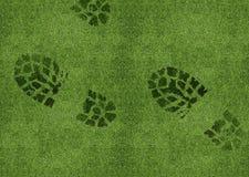 在绿色草原的鞋子打印 免版税库存图片