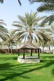 在绿色草坪和棕榈树阴影的放松小屋 免版税图库摄影