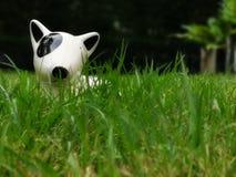 在绿色草坪的白色陶瓷狗玩具 软绵绵地集中 库存图片
