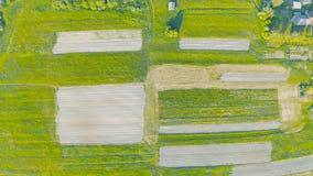 在绿色草甸中的被犁的土地,从高度的鸟瞰图 股票录像