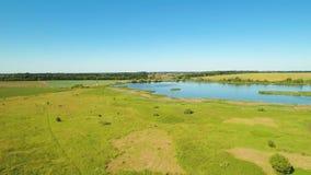 在绿色草甸和蓝色湖的惊人的看法从飞行寄生虫 影视素材